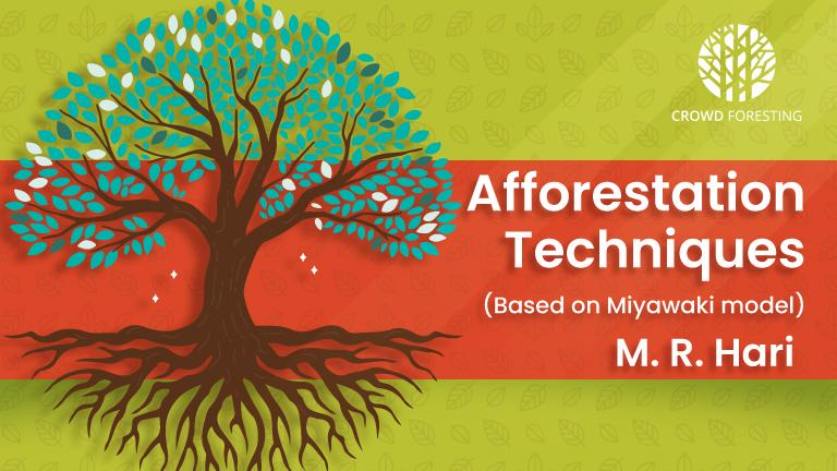 Miyawaki Afforestation Techniques